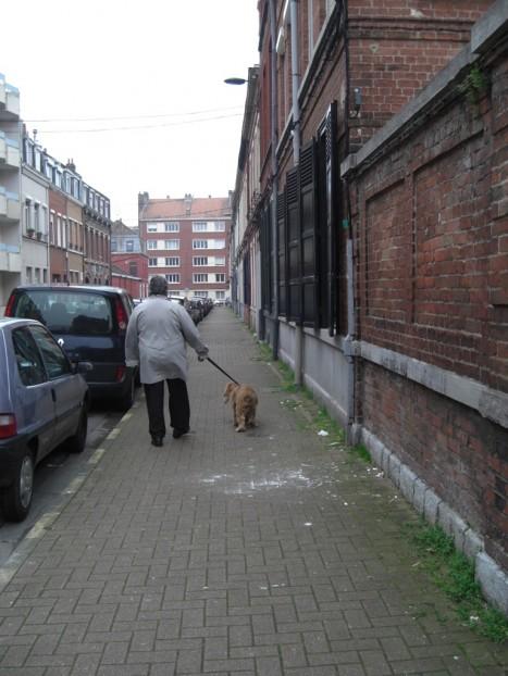Une rue. De dos, une dame et son chien